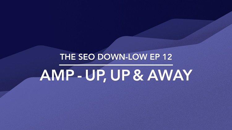 The SEO Down Low Episode 12