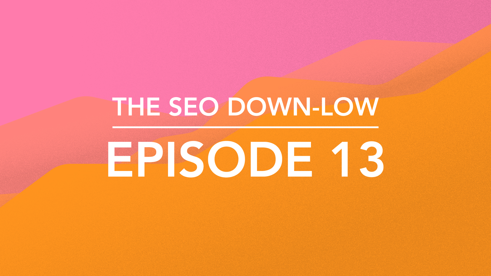 The SEO Down Low Episode 13