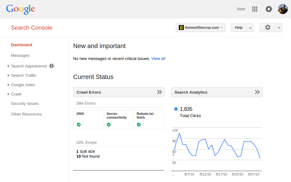Google Search Console Interface