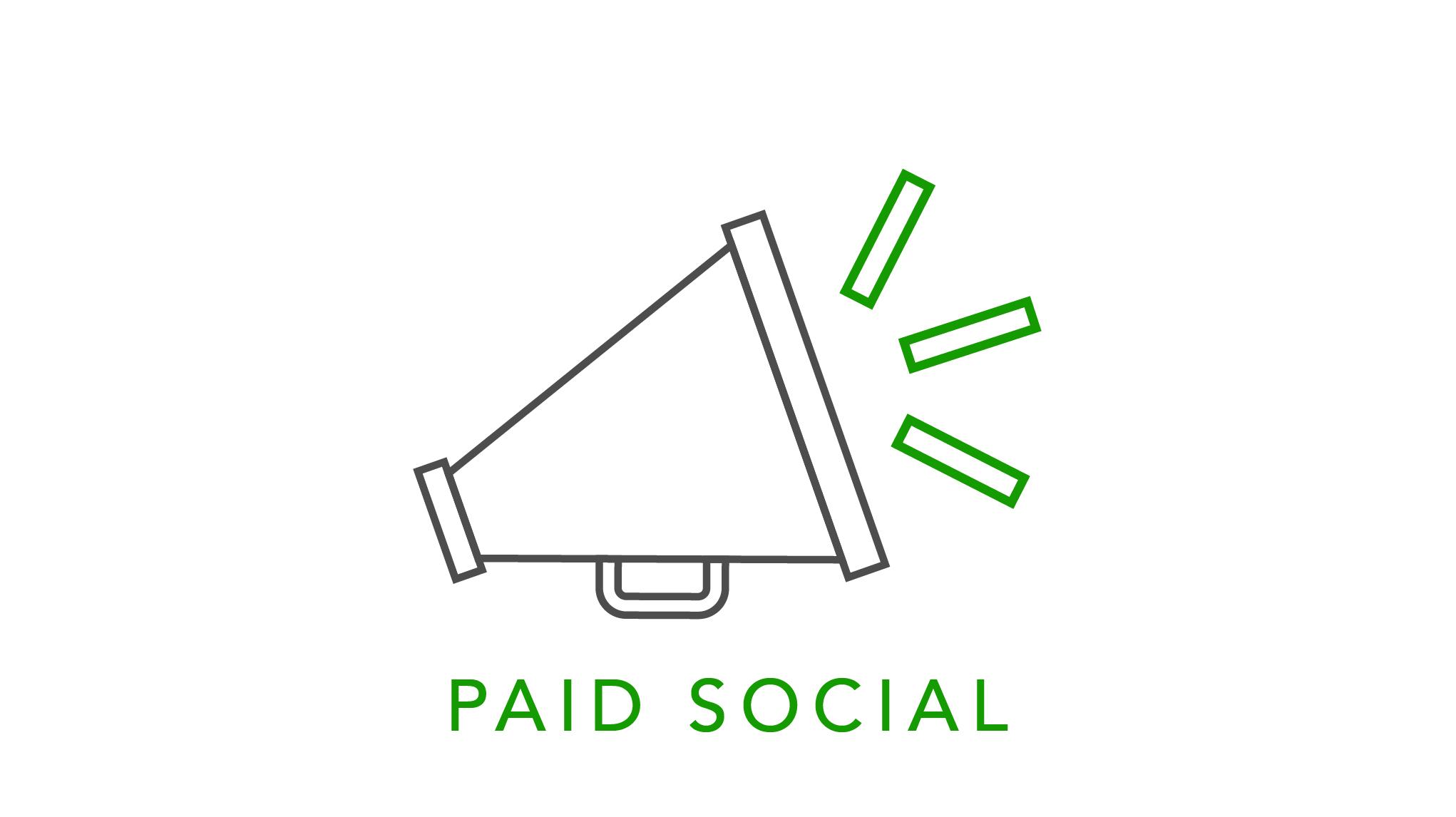 Paid Social Module at Wolfgang University