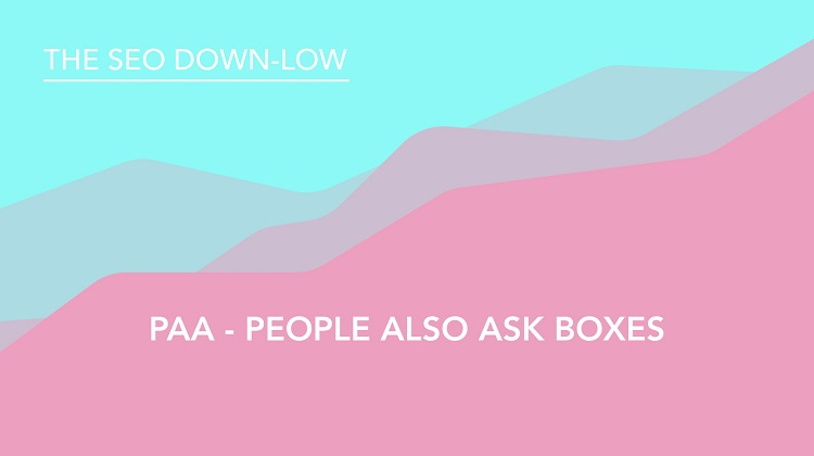 People Also Ask Boxes - PAA - SEO Down Low